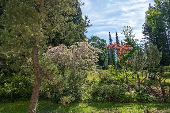 KWA Parkstift Hahnhof in Baden-Baden: Blick in den Stiftspark