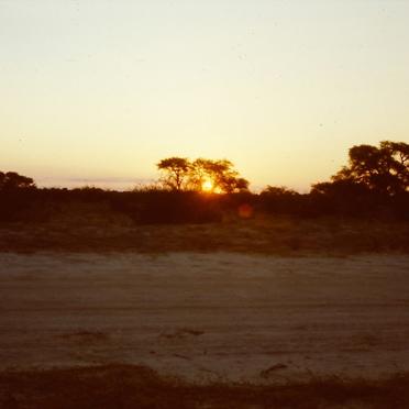 Die Kalahari (auch Kgalagadi) ist mit 1,2 Millionen Quadratkilometer eine der größten Sandwüsten der Welt