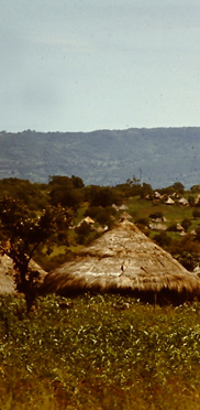 Hütten der Eingeborenen