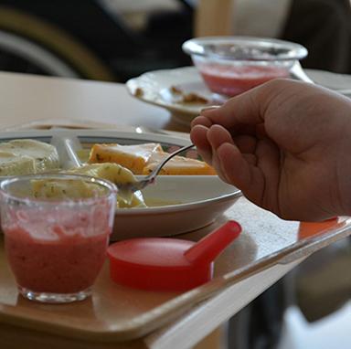 Püriertes und Aufgeschäumtes aus der Küche des KWA Kurstifts Bad Dürrheim: für Menschen mit Schluckbeschwerden