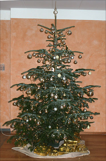 Christbaum im KWA Stift Rottal in Bad Griesbach