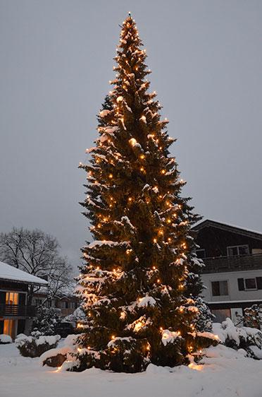 Christbaum im Garten des KWA Stifts Rupertihof in Rottach-Egern